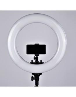 Постоянный свет FST RL-48BL светодиодный кольцевой осветитель